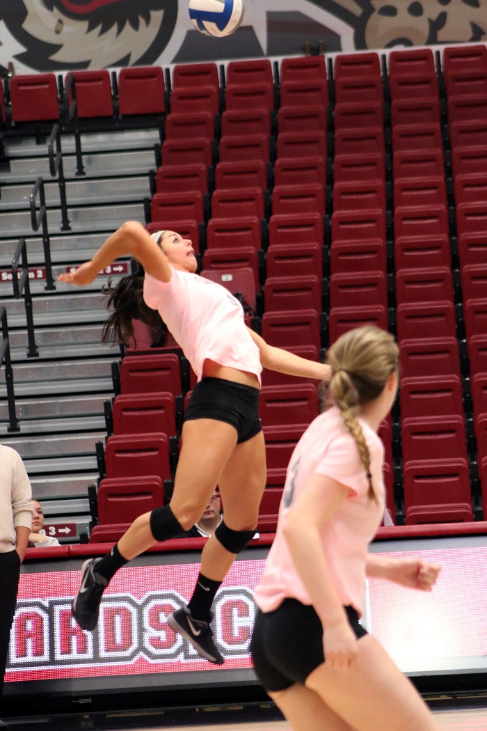 [Photo Courtesy of Austin Drucker '17] Junior Brianne Giangiobbe leaps for a kill in the Leopards latest game